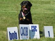 Bisbee-BOB-2011-BA